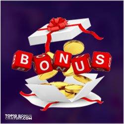 Type De Bonus